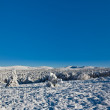 Foto Stock: Winter snowbound plain