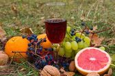 Glass of red wine among a fruits in the grass — Stock Photo