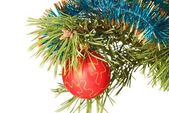 Decorated fir branch — Stock Photo