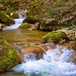 Stock Photo: Spring brook