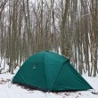 Foto Stock: Green touristic tent in forest