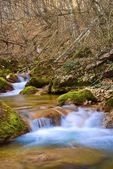 Spring river in a mountain valley — Foto Stock