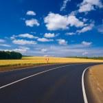 Asphalt road turn amond a fields — Stock Photo