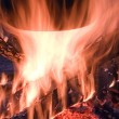 Fire burns — Stock Photo #8794073