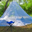 Mosquitoes tent in the woods - Stock Photo