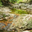 Stock Photo: Small brook