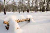 Bänk i skogen vinter — Stockfoto