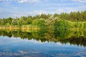 Quiet summer river — Stock Photo