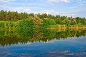 Paisaje del río verano — Foto de Stock