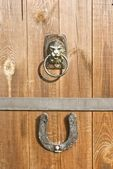 Door handle looks like of the head of a lion — Stock Photo