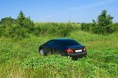 Nice black car among a green field — Stock Photo
