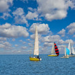 Sail regatta — Stock Photo #8871083