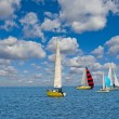 Stock Photo: Sail regatta