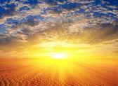 Sunset in a sand desert — Stock Photo