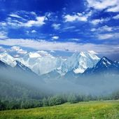 Montanhas enevoadas — Foto Stock