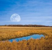 Huge moon rising above a steppe — Stockfoto