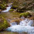 Brook in a mountain canyon — Stock Photo