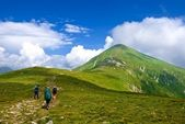 Hikers in a green mountains — Stock Photo