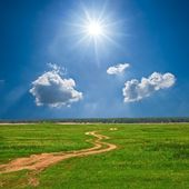 Road anong a spring fields — Stock Photo