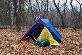Petite tente touristique dans une forêt de chênes — Photo