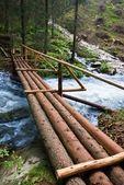 Houten brug over de rivier de haasten — Stockfoto