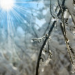 Stock Photo: Ablaze ice