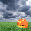 Scare pumpkin under a gloomy sky — Stock Photo