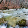 Spring rushing river — Foto Stock