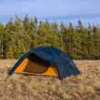Touristic tent on forest glade — Stock Photo #9702107