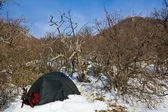 Touristic tent in a winter mountains — Stock Photo