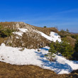 Spring hills in a snow - Stockfoto