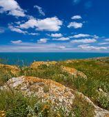 Steniga områden ovanför ett hav — Stockfoto