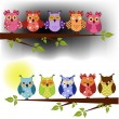 Family of owls sat on a tree branch at night and day - Stock Vector