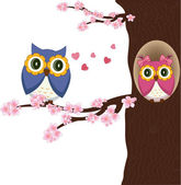Owls on the tree — Stock Vector