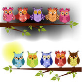 Family of owls sat on a tree branch at night and day — Stockvector