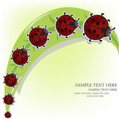 Ladybugs on a grass — Stock Vector