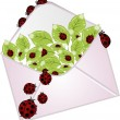 The letter with a flowers and ladybugs — Stock Vector #9719063