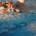 Постер, плакат: Ein Schwimmer im Wasser