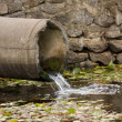 Sewage pipe — Stock Photo