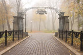 Mariinsky park — Stock Photo