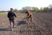Farmer at work — Stock Photo