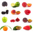 Collection fruits — Stock Photo #8353627