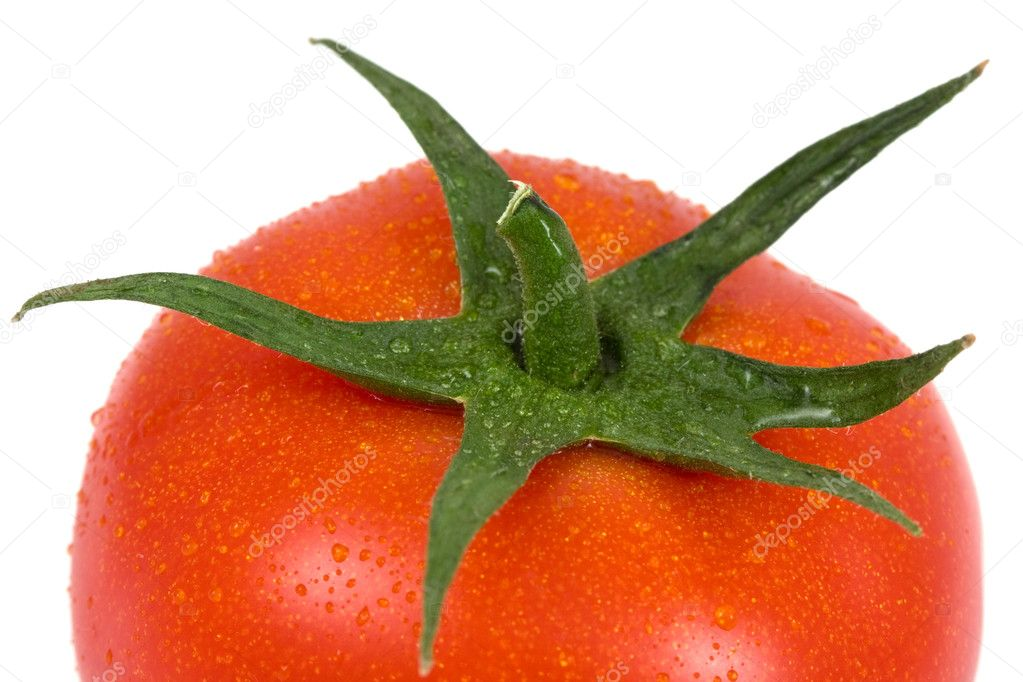 Tomato isolated on a white background — Stock Photo #8413164
