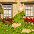 Beautiful window in France — Stock Photo