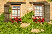 Beautiful window in France — Stock Photo