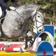 Equestrian show jumping — Stock Photo #8734329