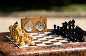 Chessboard with chess in a park — Stock Photo