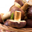 Stock Photo: Basket mushrooms on isolated