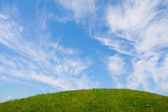 Green grass and blue sky — Stock Photo