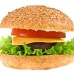 Cheeseburger isolated — Stock Photo #9507447